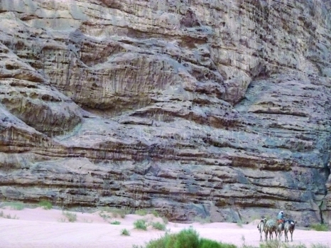 gkandresenwadirum
