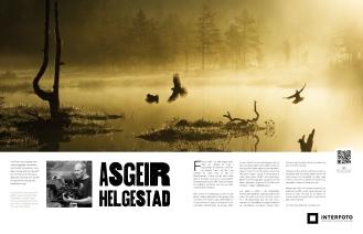Naturfoto: Asgeir Helgestad ©