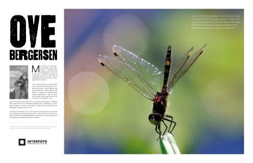 Naturfoto: Ove Bergersen ©